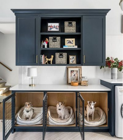 Laundry room with dogs in dog beds